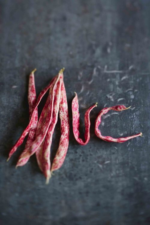 haricots coco-legumes à cuisiner-photographe-culinaire-nature-morte-nord - onepicagency